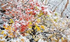 野三坡冬季雪中自驾游攻略